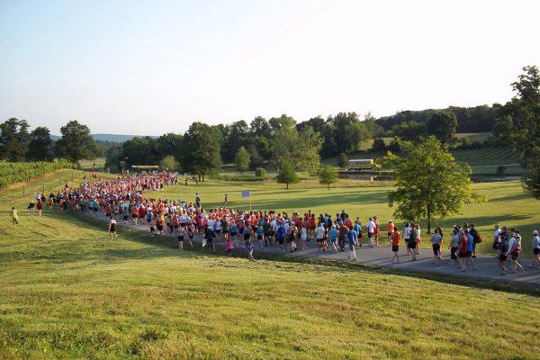 Wine Country 1/2 Marathon