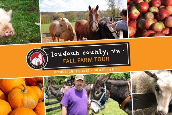 loudoun fall farm tour 2019