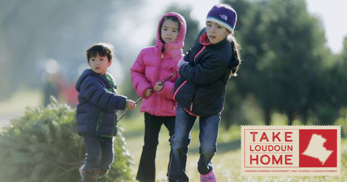 take loudoun home for the holidays 2020